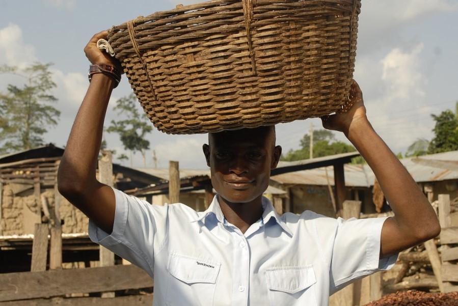 Des fermes solidaires au Bénin au Togo et Burkina-Faso